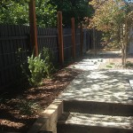 Rear-Courtyard---Balwyn